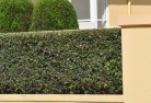 Axe Creek Privacy screens 30